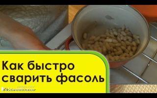 Как сварить фасоль