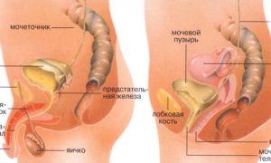 О чем сигнализирует боль при введении полового члена во влагалище