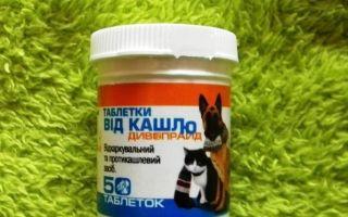 Какие препараты нужны от простуды для собаки