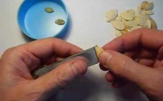 Как чистить тыквенные семечки
