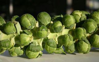 Как убрать горечь в брюссельской капусте