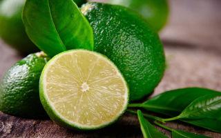 Сколько может хранится манго