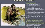 Человек умелый — характеристика и образ жизни наших предков
