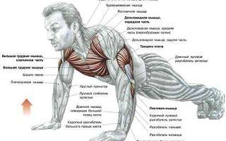 Как накачать мышцы ребёнку