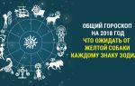 Что сулит гороскоп на 2018 год знакам зодиака: прогноз по восточному календарю