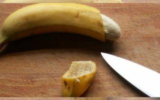 Как выглядит член после обрезания