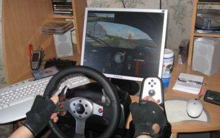 Какие игры подходят под руль