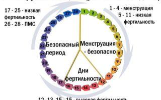 Как считать начало цикла