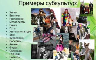 На какие субкультуры делится современная молодежь
