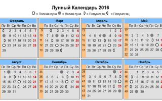 Когда солить капусту в 2018 году по лунному календарю: благоприятные дни