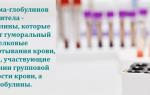 Что такое гамма-глобулин