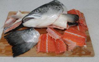 Какую рыбу лучше всего покупать для ухи