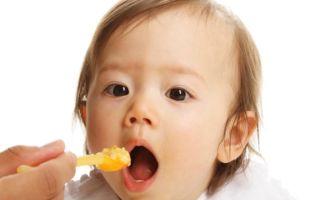 Как давать ребенку желток