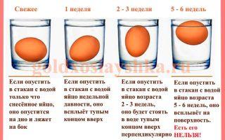 Сколько хранятся фаршированные яйца