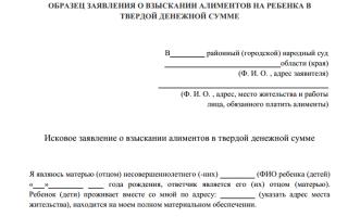 Как подать в суд заявление на фиксированную сумму алиментов
