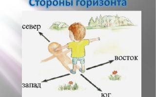 Как определить, где север, юг, запад и восток